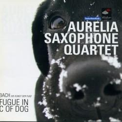 Aurelia DOG